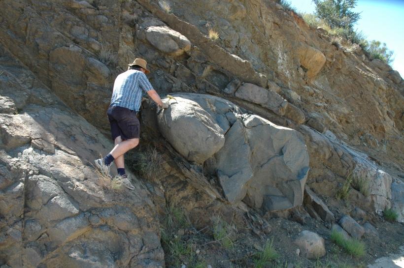 Her ser vi min veileder Bjørn som går løs på forvitret stein med geologhammer.