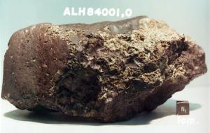 Dette er en av rundt hundre meteoritter fra Mars som er blitt funnet på jorda. Jeg tror ikke forfedrene våre kom hit med akkurat denne. Bilde: Wikimedia Commons